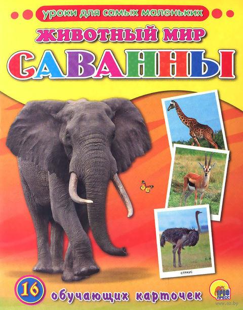 Животный мир. Саванны. 16 обучающих карточек — фото, картинка