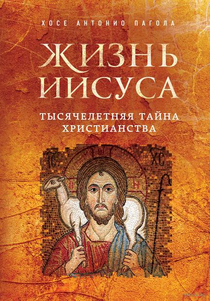 Жизнь Иисуса. Тысячелетняя тайна христианства. Хосе Пагола