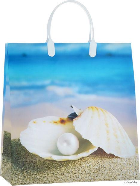 Пакет пластиковый подарочный (30х30 см; арт. BAM 61)