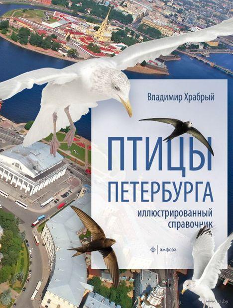 Птицы Петербурга. Владимир Храбрый