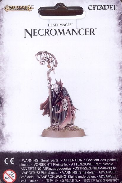 Warhammer Age of Sigmar. Deathmages. Necromancer (91-34) — фото, картинка