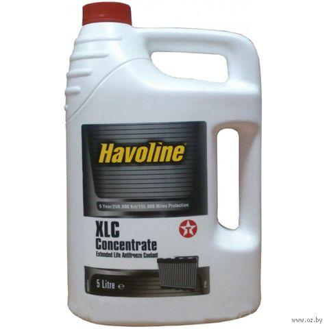 "Антифриз ""Havoline XLC+B"" (5 л; концентрат; оранжевый) — фото, картинка"