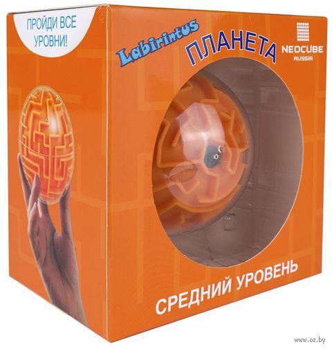 "Лабиринтус ""Планета"" (10 см; средний уровень) — фото, картинка"