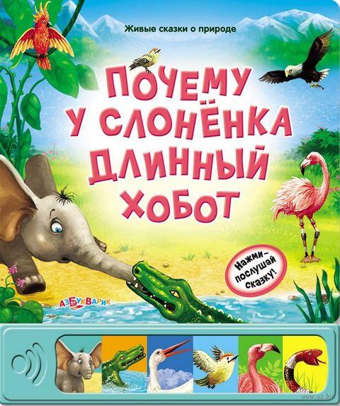 Почему у слоненка длинный хобот? — фото, картинка