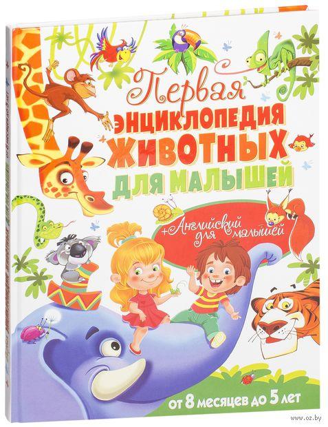 Первая энциклопедия животных для малышей — фото, картинка