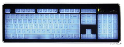 Проводная клавиатура с подсветкой клавиш Smartbuy 301 (SBK-301U-KW)