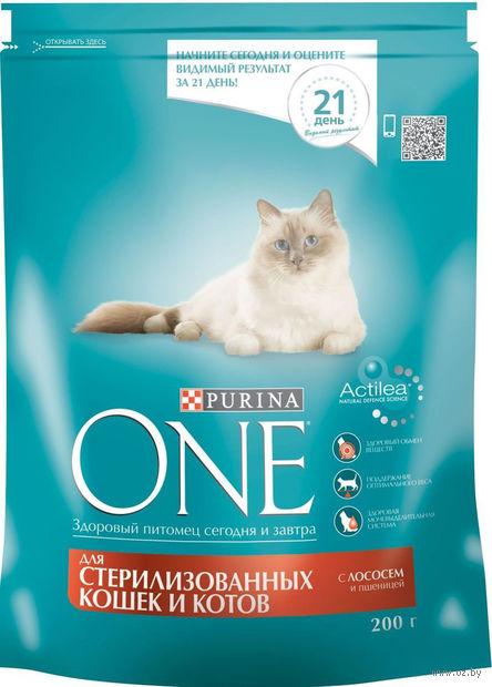 Корм сухой для стерилизованных кошек (200 г; лосось и пшеница) — фото, картинка