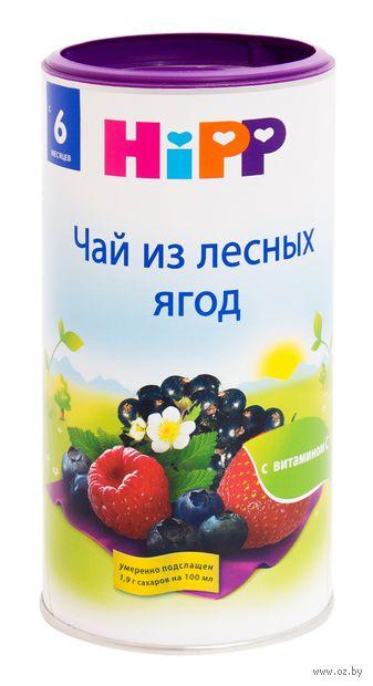 """Чай детский """"HiPP. Лесные ягоды"""" (200 г) — фото, картинка"""