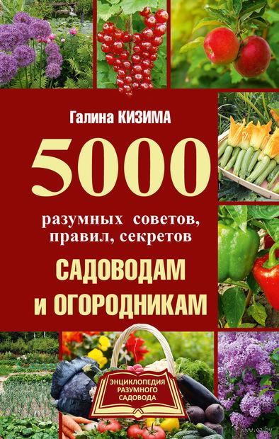 5000 разумных советов, правил, секретов садоводам и огородникам — фото, картинка