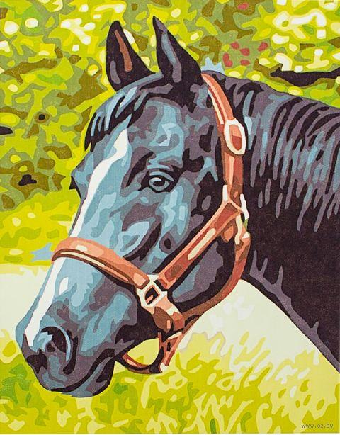 "Картина по номерам ""Лошадь №4"" (300х400 мм)"