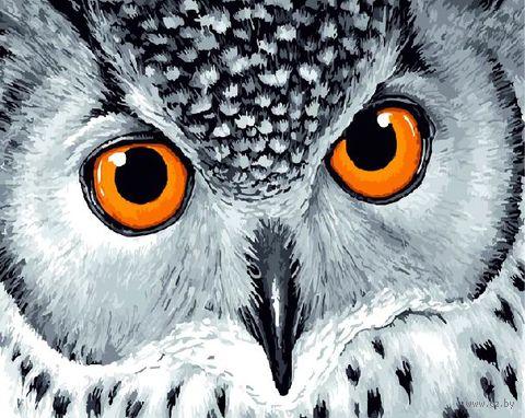 "Картина по номерам ""Глубина совиных глаз"" (400х500 мм) — фото, картинка"