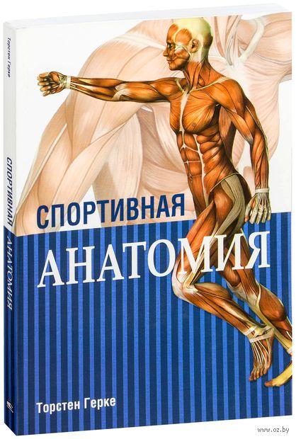 Спортивная анатомия. Герке Торстен