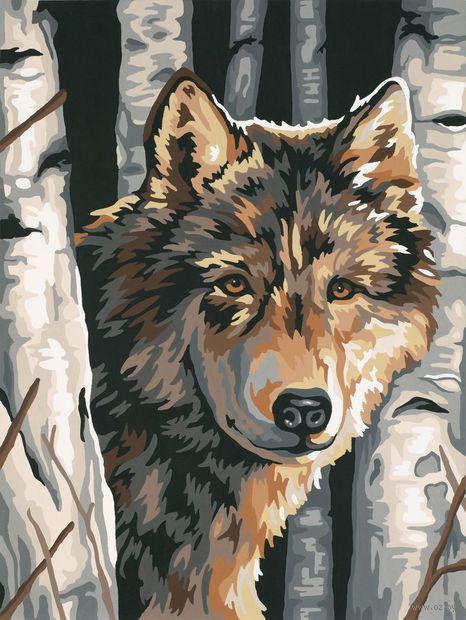 """Картина по номерам """"Волк среди берез"""" (230х300 мм) — фото, картинка"""